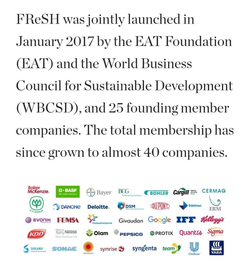 Wbcsd Partners