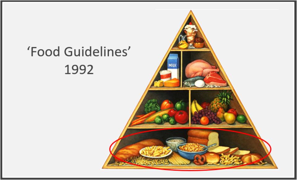 Guide 1992